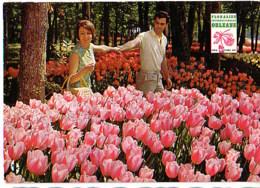 Cpsm Cp 45 Orleans Floralies Ets Lanson Olivet 1967 Publicite - Orleans