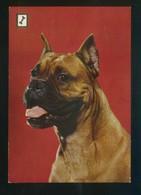 Ed. Fisa. 1ª Serie *Animales Domésticos* Nº 5. Nueva. - Perros
