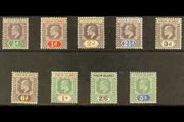 1904 KEVII Complete Set, SG 54/62, Fine Fresh Mint. (9 Stamps) For More Images, Please Visit Http://www.sandafayre.com/i - Iles Vièrges Britanniques