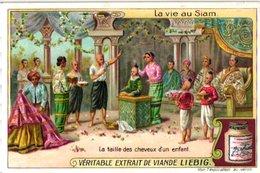 0982  Liebig 6 Cards- C1909-Life In Siam-Vie Au Siam-Cheveux D'Enfant-Enterrement-Eléphant Blanc-Noble-Chans-Bangkok - Liebig