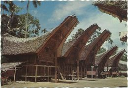 AK Indonesien Sulawesi Celebes Rumah Adat Toraja De Palawa Farbfoto #0615 - Indonésie