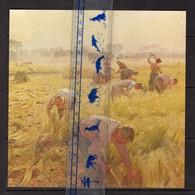Artis Historia  Fiche 164 17 X 17cm Industrie Liniere En Belgique Tissus Arrachage Du Lin 1904 Emile Claus Agriculture - Artis Historia