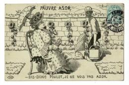 """Carte Illustrée A.D """"Dis-donc Poulot, Je Ne Vois Pas Azor"""" La Grosse Dame Est Assise Sur Son Chien, Jardinier, Arrosoirs - Illustrateurs & Photographes"""