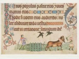 Postcard - Artifax - Harrowing, Luttrell Psalter, English AD.1335 - 40 - Unused Very Good - Unclassified