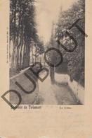 Postkaart-Carte Postale TIENEN/Tirlemont La Ghète- De Gete  1901 (K35) - Tienen