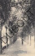 Postkaart-Carte Postale TIENEN/Tirlemont Boulevard De La Raffinerie  Suikerraffinaderij (K38) - Tienen