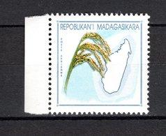 MADAGASCAR N° YVERT 1895 SANS SURCHARGE SANS FACIALE  NEUF SANS CHARNIERE COTE ? € RIZ  CARTE  VOIR DESCRIPTION - Madagascar (1960-...)