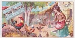 CHROMOS BASSE COUR N°6 CHOCOLAT TOBLER - Altri