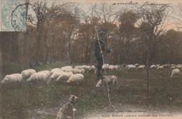 ***  Berger Landais Gardant Son Troupeau Dans La Grand Lande - TTB - Breeding