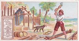 CHROMOS ROBINSON CRUSOE N°2 CHOCOLAT TOBLER - Autres Collections