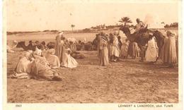 POSTAL   TUNIS (TUNEZ)  AFRICA  - CAMPAMENT DE NOMADES (PAYSAGES D'ORIENT SERIE VI Nº 2563) - Túnez