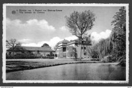 Gors-op-Leeuw / Borgloon - Zijzicht Van 't Kasteel - Vue Latérale Du Château - Borgloon