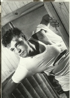 BLUES BOYS 1985  James MARDLE Select Men  PC15  Photo Neil Mackenzie Matthews - Photographie