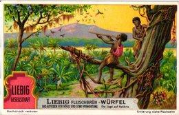 1215   Liebig 6 Cards Duits Birds Feathers & Their Uses-Gefieder Der Vögelund Seine Verwertung-Pfauenfederschmück-China - Liebig