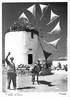 Grèce  Greece MYKONOS  The Windmill (Le Moulin à Vent Mill) * PRIX FIXE - Grèce