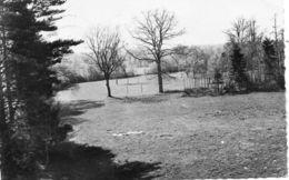 - LALANDE (89) -  Le Parc Du Château  -11294- - France