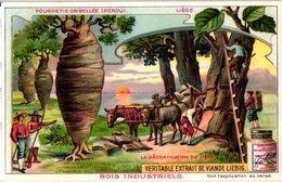 0820 Liebig 6 Cards-Bois Industriels-Trees & Their Uses-Quinquina-Cèdre-Acajou-Brésil-Caoutchouc-C1905 - Liebig