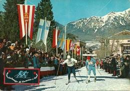 "Trentino, ""Marcialonga Di Fiemme E Fassa"" 1972, Partecipanti Al Traguardo - Sport Invernali"