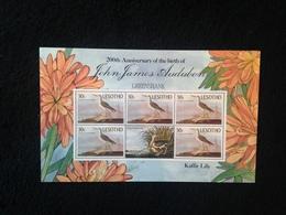 Lesotho Anniversary Of John Audubon 30s Sheetlet - Lesotho (1966-...)