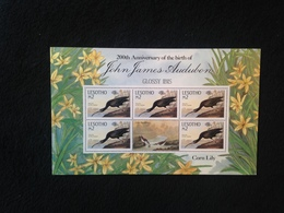 Lesotho Anniversary Of John Audubon M2 Sheetlet - Lesotho (1966-...)
