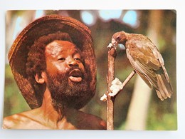 C.P.A. : SEYCHELLES : Man With Black Parrot, Stamp In 1979 - Seychelles