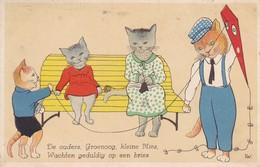 Cerf  Volant  Kite  Drachen  Chat Cat Katze  Cpa. 1934 - Postcards