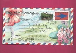 Aérogramme YT N° 9 De 1996 Pour La France + 480A - Aerogrammes