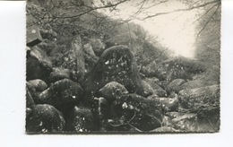 CPSM GF -  LANRIVAIN - Gorges De Toul-Goulic - Perte Du Blavet Sous Les Chaos - - France