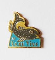 Pin's Poisson Pêche L'eau Vive 35 - ANIMAUX - Animals