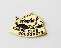 Pin's Poisson Carpe Club Solognote - ANIMAUX - Animals