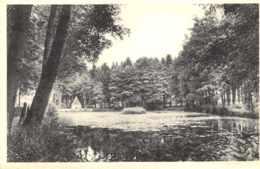 Saint-Hubert - La Fontaine Et Le Parc - Saint-Hubert