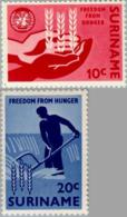 Suriname 1963 Anti Honger Campagne VN - NVPH 394 Ongestempeld - Suriname ... - 1975