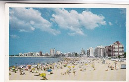 N°316. MONTEVIDEO, PLAYA POCITOS.  ED IMPRESORA URUGUAYA SA. CIRCA 1970 NON CIRCULEE - BLEUP - Uruguay