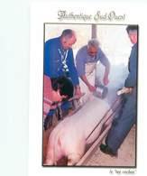 La Tue Du Cochon Sud Ouest    B 631 - Breeding