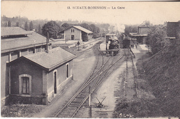 BAD-  SCEAUX ROBINSON EN HAUTS DE SEINE  LA GARE  TRAIN EN GARE - Sceaux