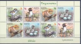 2018. Belarus, Chicks, S/s, Mint/** - Belarus