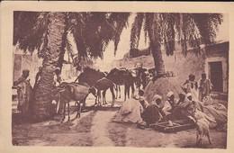 MAROC----caravane Au Repos--voir 2 Scans - Maroc