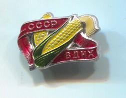 Russia USSR - VDNH Agriculture Farming Landwirtschaft, Vintage Pin, Badge, Abzeichen - Trademarks