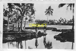 Samoa, Lot De 2 Photos De Pago-Pago, Années 1920-30 - Samoa