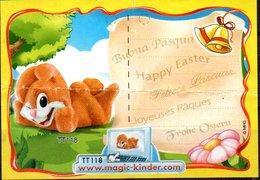 Cartina Istruzioni Kinder ' Buona Pasqua' (Fronte E Retro) - Notices