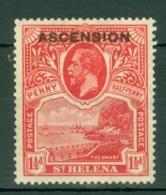 Ascension: 1922   KGV - St Helena Stamp 'Ascension' OVPT    SG3    1½d    MH - Ascension