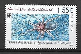 TAAF 2019 - Yv N° 895 ** - Neomaso Antarcticus - Ungebraucht