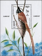 Kampuchea 1987 -  Bird : Asian Paradise Flycatcher ( Mi Bl 153 - YT Bf 60 ) - Kampuchea