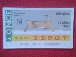 SPAIN DÉCIMO CUPÓN DE ONCE LOTERÍA LOTTERY LOTERIE RABBIT LAPIN LIÈVRE HARE HASE LIEBRE CONEJO...FAUNA IBÉRICA VER FOTO - Billetes De Lotería