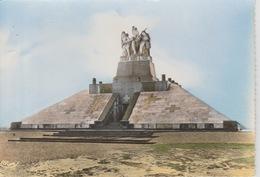 19 / 1 / 273. -  MONUMENT  DE. NAVARIN (51 ). élèves à La Mémoire Des Morts Des Armées Alliées  De Champagne - C. P. M. - France