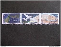 TAAF:  TB Bande N° 714 Au N° 716, Neufs XX. - French Southern And Antarctic Territories (TAAF)