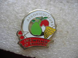 Pin's Des Arboriculteurs Des Communes D'Ingwiller Et Environs. Pomme, Poire, Raisin, Cerise - Food