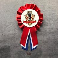 Medal Plaque (Plakette) PL000087 - Football (Soccer Calcio) Croatia HNS Federation Association Union LIMITED EDITION - Habillement, Souvenirs & Autres