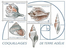 TAAF 2019 - Coquillages De Terre Adélie ** - French Southern And Antarctic Territories (TAAF)