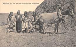 Syria - Ethnic / 50 - Moisson Du Blé Par Les Cultivateurs Bédouins - Syrie
